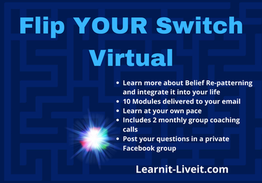 Flip_YOUR_Switch_Virtual.png